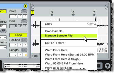 Live_sample_editor_002a_1