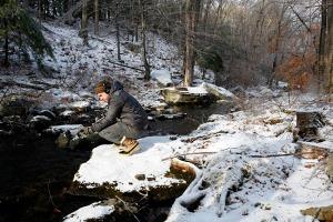 Winter Field Recording