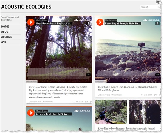 acoustic ecologies