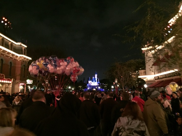 Yes I went to see the fireworks, and yes it was very crowded.